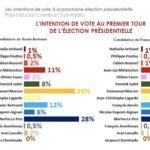 フランス世論調査